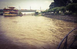 Bonn Triathlon Hochwasser