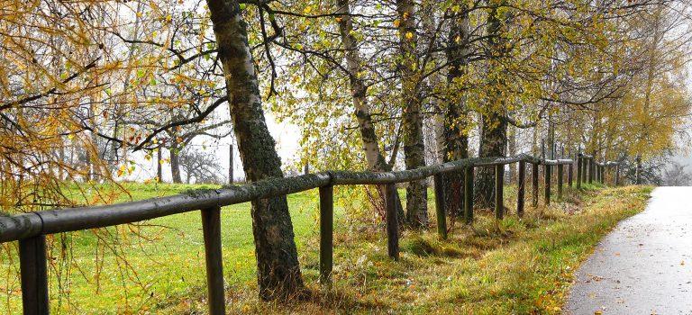 Laufen bei Regen – Worauf sollte ich achten?