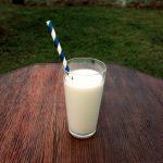 Low Carb Vanille Milchshake selbst gemacht